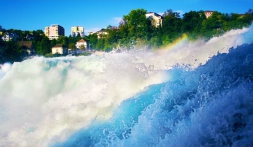 Bodensee – Ein See, drei Länder…..mit Insel Mainau